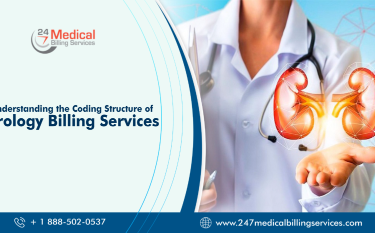 Understanding the Coding Structure of Urology Billing Services